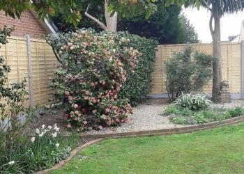 Garden-fence-1