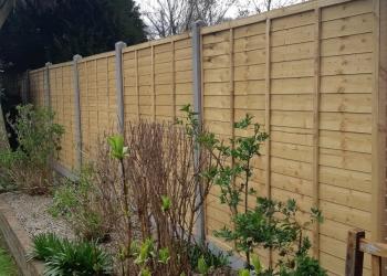 Garden-fence-2