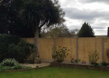 Garden-fence-3